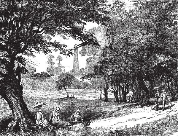 View of Phoenix Park, vintage engraving. Stock photo © Morphart