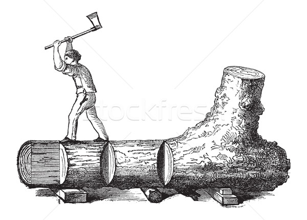 How a Tree is Made into Lumber, vintage engraving Stock photo © Morphart