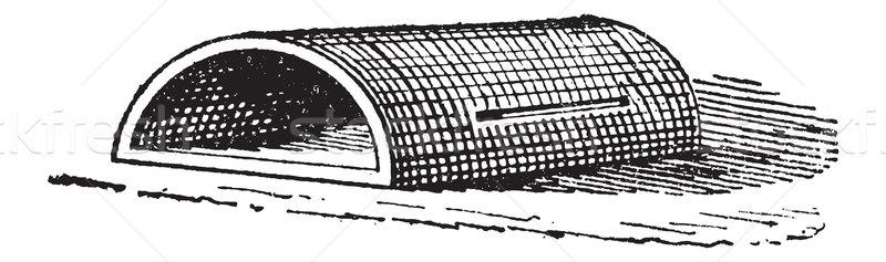 Bağbozumu oyma oyulmuş örnek sözlük sözler Stok fotoğraf © Morphart