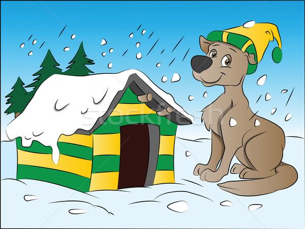 Köpek kış örnek ev doğa rüzgâr Stok fotoğraf © Morphart