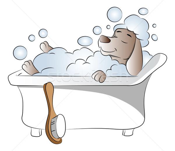 Vector of dog in bathtub. Stock photo © Morphart