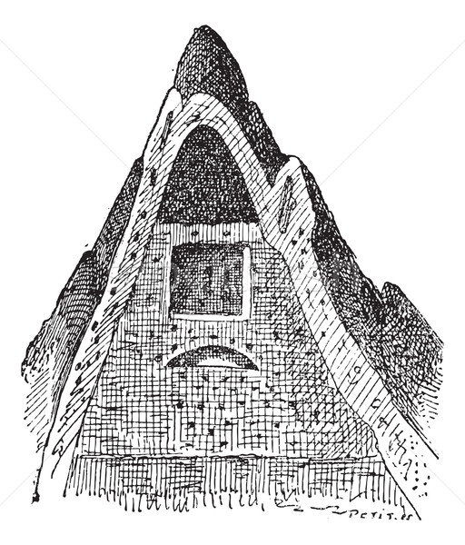 Termite nest, vintage engraving. Stock photo © Morphart