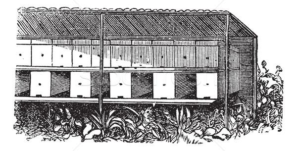 Arı bağbozumu oyma eski oyulmuş örnek Stok fotoğraf © Morphart