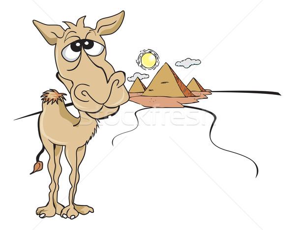Vicces barna teve illusztráció napos egyiptomi Stock fotó © Morphart