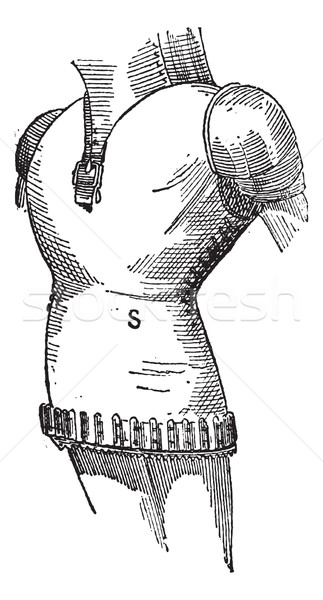 Surcoat of arms, vintage engraving. Stock photo © Morphart