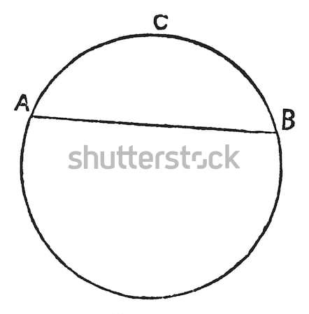 Circular segment vintage engraving Stock photo © Morphart