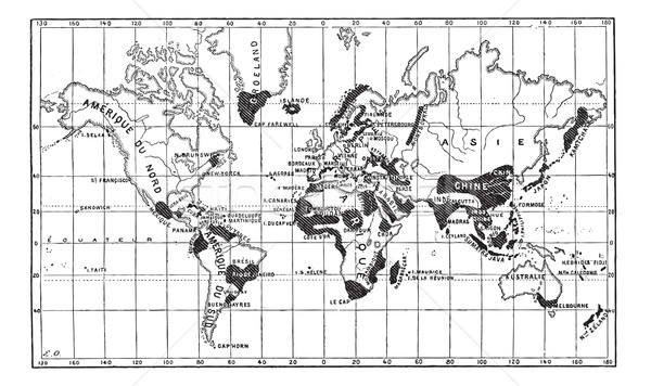 Map of the Geographical Occurence of Leprosy, vintage engraving Stock photo © Morphart