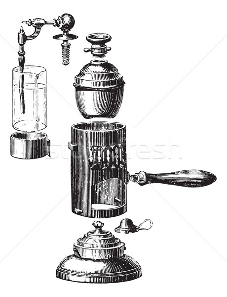 Boboeuf spray, removed, vintage engraving. Stock photo © Morphart