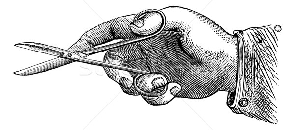 How to hold the scissors to make an incision, vintage engraving. Stock photo © Morphart