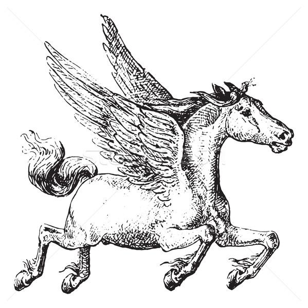 Pegasus, vintage engraving. Stock photo © Morphart