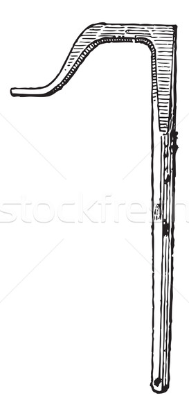 Valet, vintage engraving Stock photo © Morphart