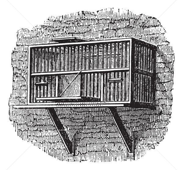 Pombo gaiola vintage gravado enciclopédia Foto stock © Morphart
