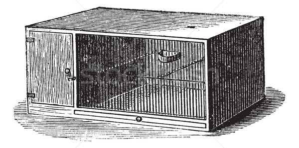 Mouse cage vintage engraving Stock photo © Morphart
