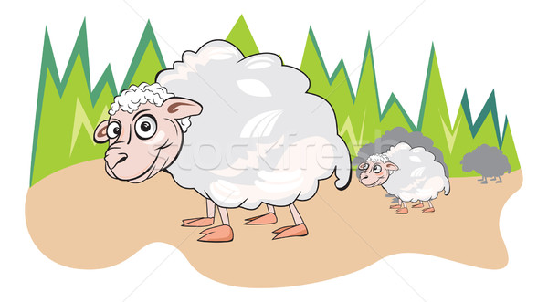 Sheep or Ovis aries, illustration Stock photo © Morphart
