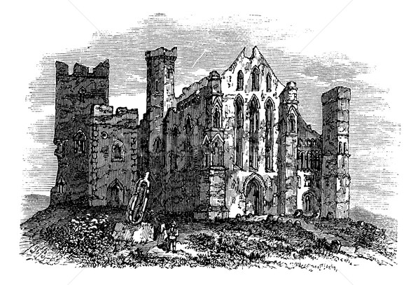 Rock of Cashel or Cashel of the Kings, Ireland vintage engraving Stock photo © Morphart
