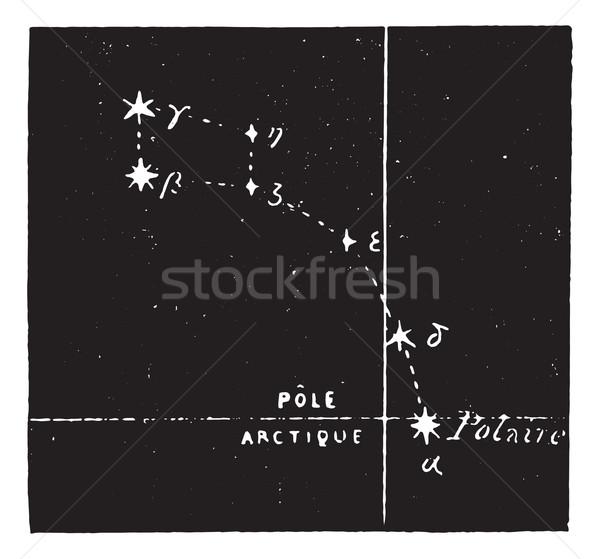 Polar star, vintage engraving. Stock photo © Morphart