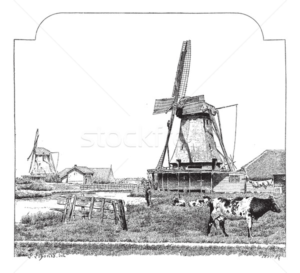 Stock photo: Mills, Zaandam (Holland), vintage engraving.