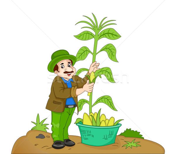 Man Harvesting Corn, illustration Stock photo © Morphart