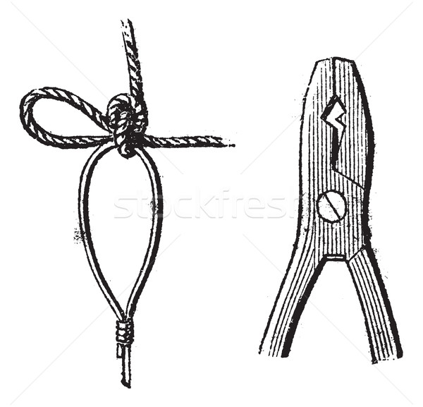 Fig. 17. Clove,  Fig. 18. Pliers for sealing, vintage engraving. Stock photo © Morphart
