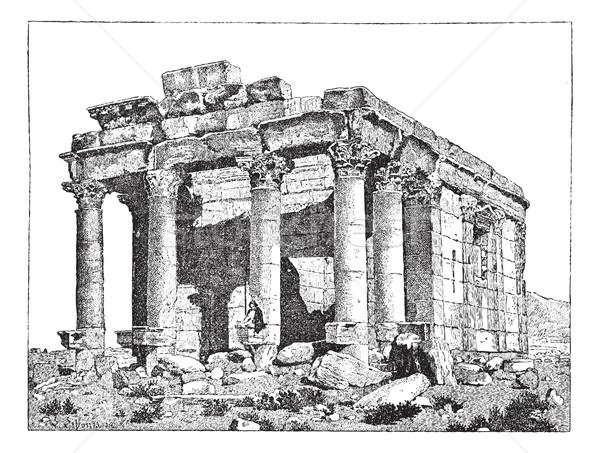Templo Síria vintage gravado ilustração Foto stock © Morphart