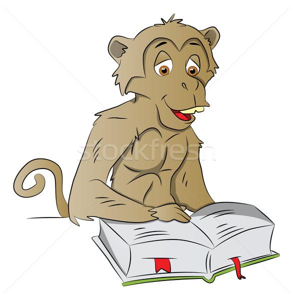 ベクトル 賢い 猿 読む 図書 賢い ストックフォト © Morphart