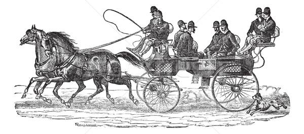 復古 雕刻 老 刻 插圖 馬匹 商業照片 © Morphart