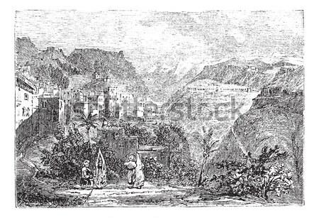 Oliwek dolinie Jerozolima vintage wyryty ilustracja Zdjęcia stock © Morphart