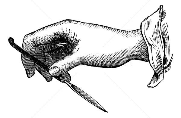 Pozició kés sofőr klasszikus gravírozott illusztráció Stock fotó © Morphart