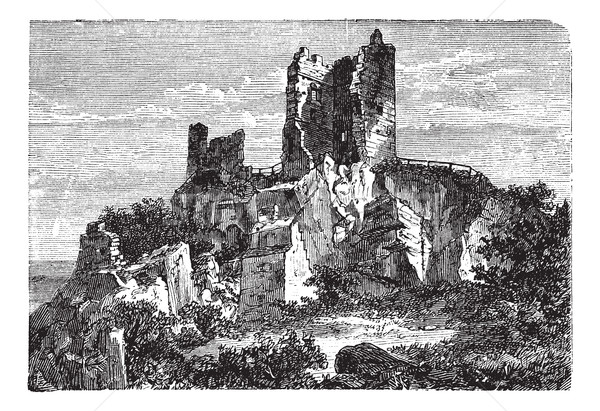 Ruin of Drachenfels Castle in Rhineland-Palatinate, Germany, vin Stock photo © Morphart