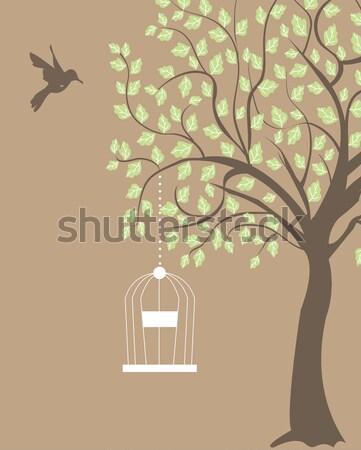 Gaiola enforcamento ramo árvore primavera Foto stock © Morphart