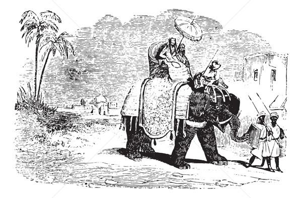 Turistas elefante vintage grabado ilustración Foto stock © Morphart