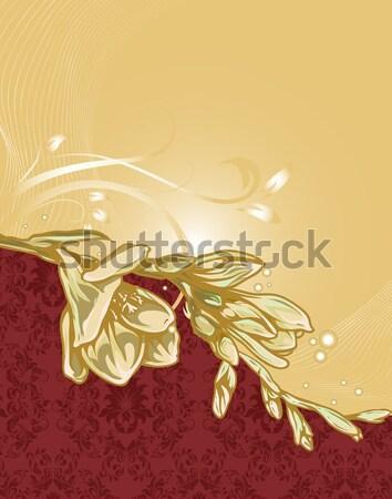 Jahrgang Einladungskarte eleganten Retro abstrakten Stock foto © Morphart