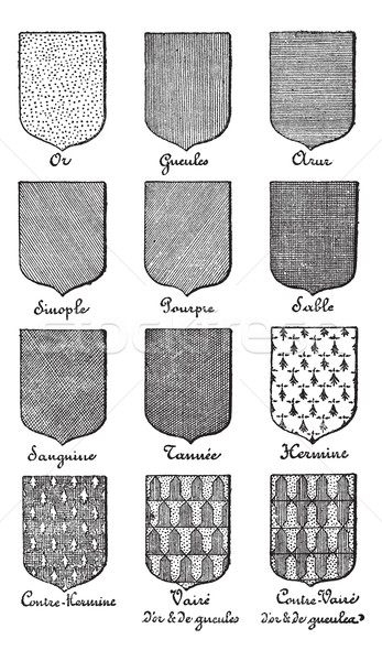 Variety of enterprise enamels used in Heraldry vintage engraving Stock photo © Morphart