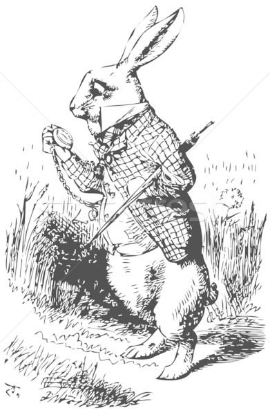 White Rabbit with watch  Stock photo © Morphart