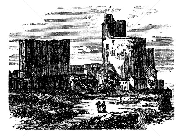 Castle - narbornne door and the treasure house vintage engraving Stock photo © Morphart