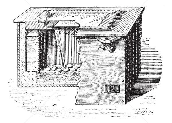 Artificial incubation vintage engraving Stock photo © Morphart