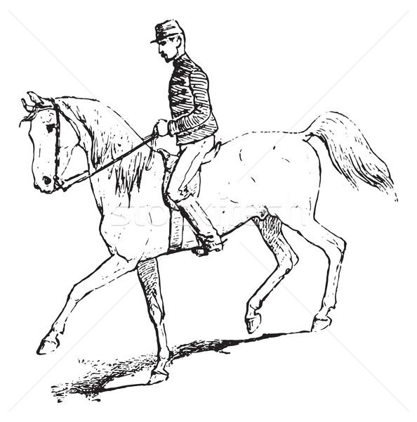 Passaggio equitazione cavallo vintage inciso Foto d'archivio © Morphart