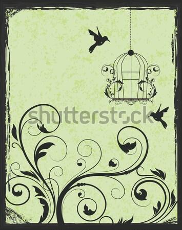 Green and black birdcage invitation  Stock photo © Morphart