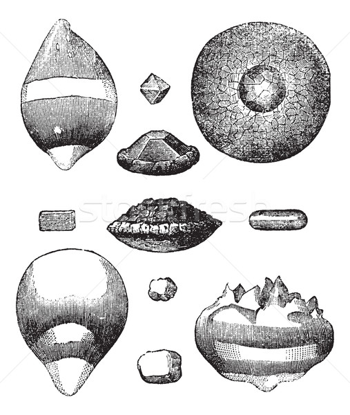 Different forms of hail vintage engraving Stock photo © Morphart