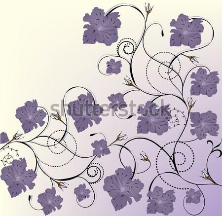 Vintage elegancki retro streszczenie kwiatowy projektu Zdjęcia stock © Morphart