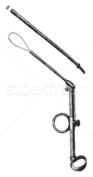 Polypectomy for polyps ear, vintage engraving. Stock photo © Morphart