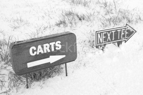 Cart successivo segno neve coperto campo da golf Foto d'archivio © morrbyte
