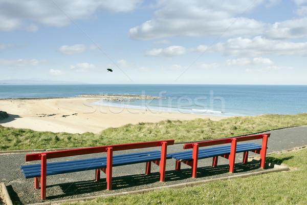 ビーチ 海岸 美しい パス 雲 木材 ストックフォト © morrbyte