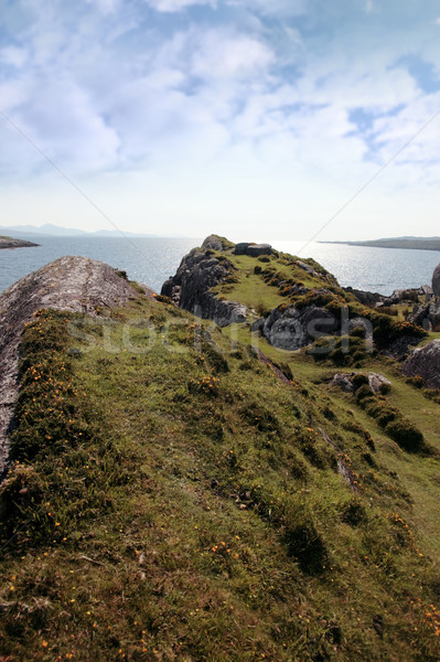 sunny rocky kerry headland view Stock photo © morrbyte