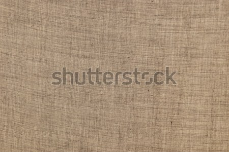 brown texture background Stock photo © morrbyte