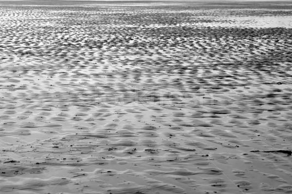 沙 海灘 愛爾蘭 黑白 質地 日落 商業照片 © morrbyte