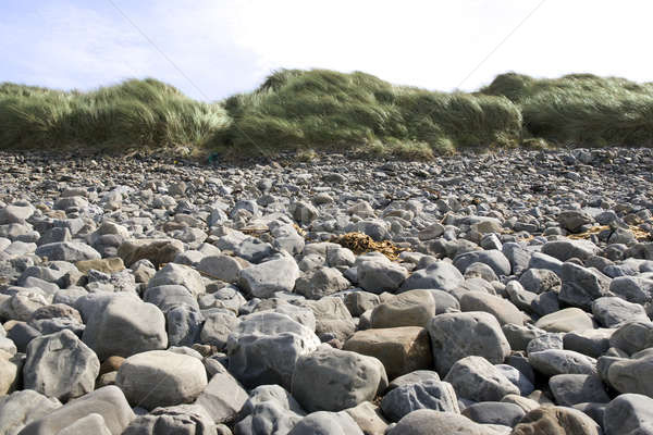 rocky beach in Kerry Ireland Stock photo © morrbyte
