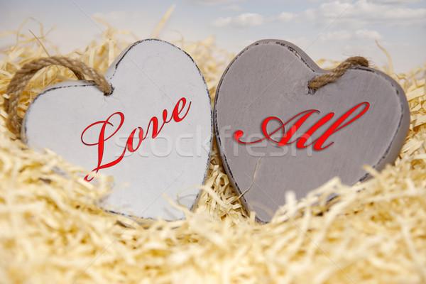Foto d'archivio: Amore · tutti · legno · cuori · due · nido