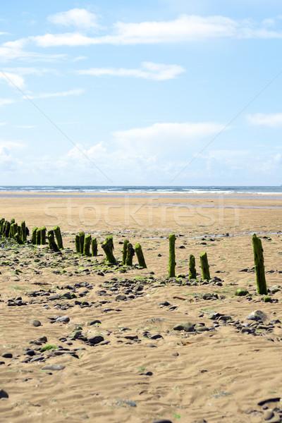 green wave breakers Stock photo © morrbyte