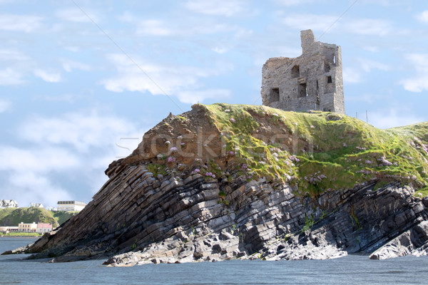 castle ruins on the cliff Stock photo © morrbyte